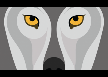 Illustratie van een wolf uitsnede ogen en neus