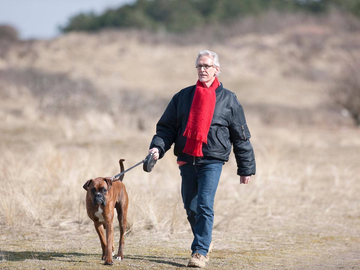 Bezoeker met hond in het duin