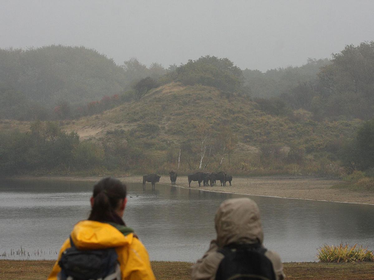 Bezoekers in het Kraansvlak NPZK