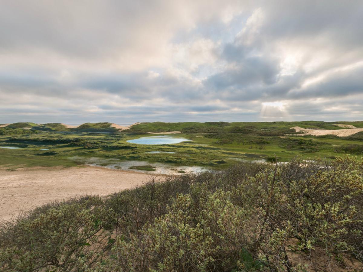 Uitzicht op de Noordwest Natuurkern