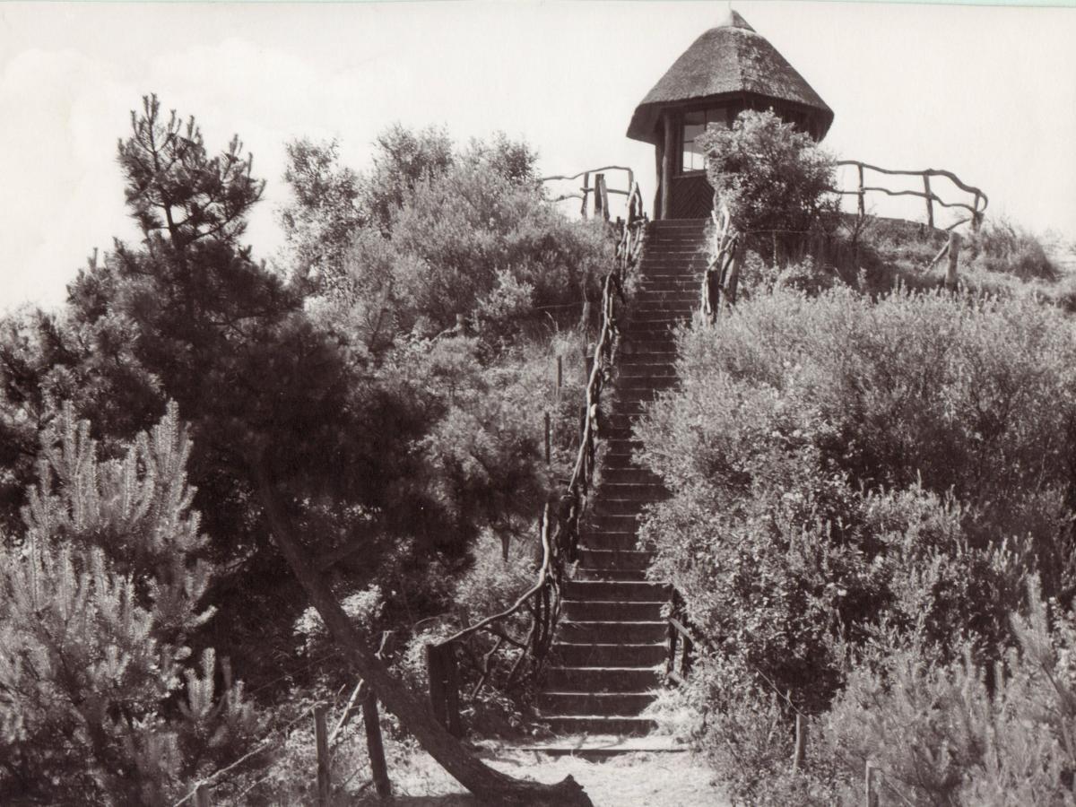 Uitkijkpost in 1959 bij de Kruisberg Noordhollands Duinreservaat