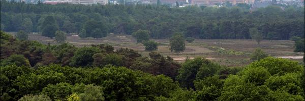 In 't Gooi wint PWN jaarlijks 4,8 miljoen kuub water. Dit water is van nature zo zuiver dat het vrijwel direct gedronken kan worden.