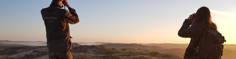 Boswachter kijkt met verrekijker uit over de duinen