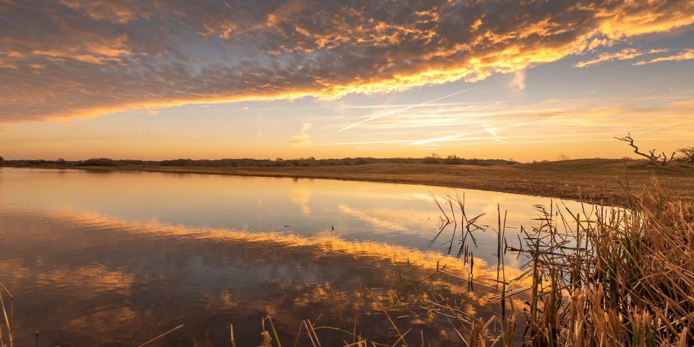Infiltratiegebied Castricum met laaghangende zon