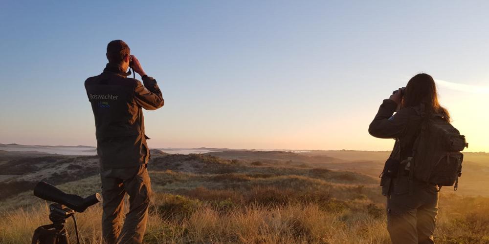 Twee boswachters kijken met verrekijker uit over het zonovergoten duinlandschap