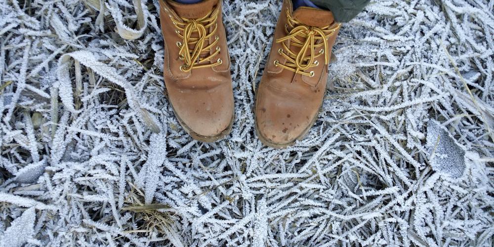 Wandelschoenen in de winter
